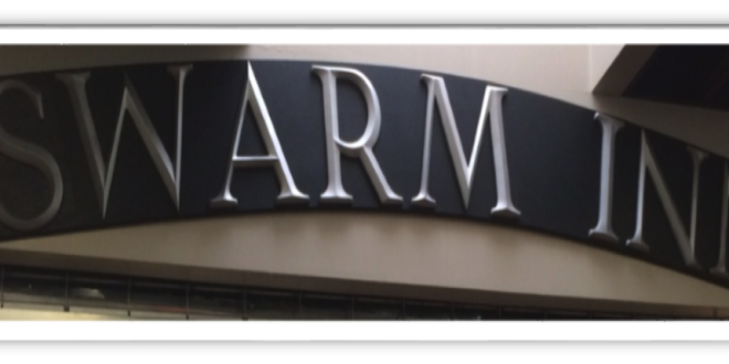 Who is Behind the Changes in The Swarm?